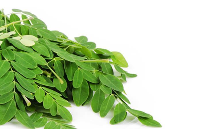 moringa-health-benefits-in-abundance
